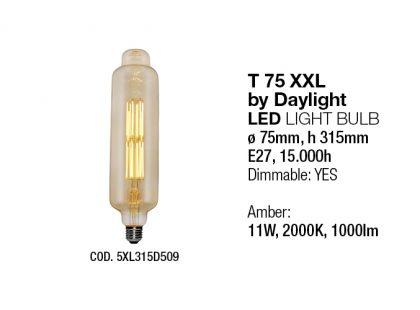 Light Sources Interia NEW24