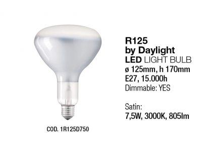 Light Sources Interia NEW61